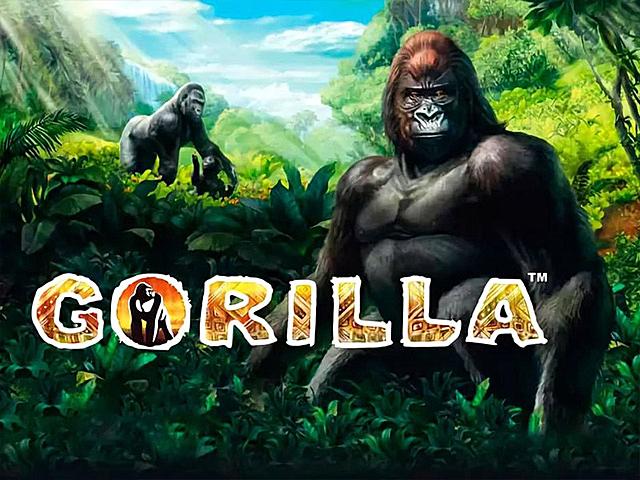 Игровой слот Gorilla — играть онлайн